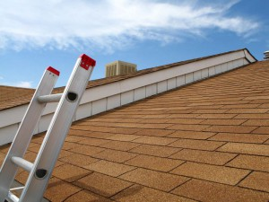 Everything-You-Need-to-Know-About-Fixing-Roofs